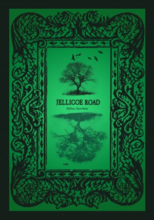 Jellicoe Road Epub